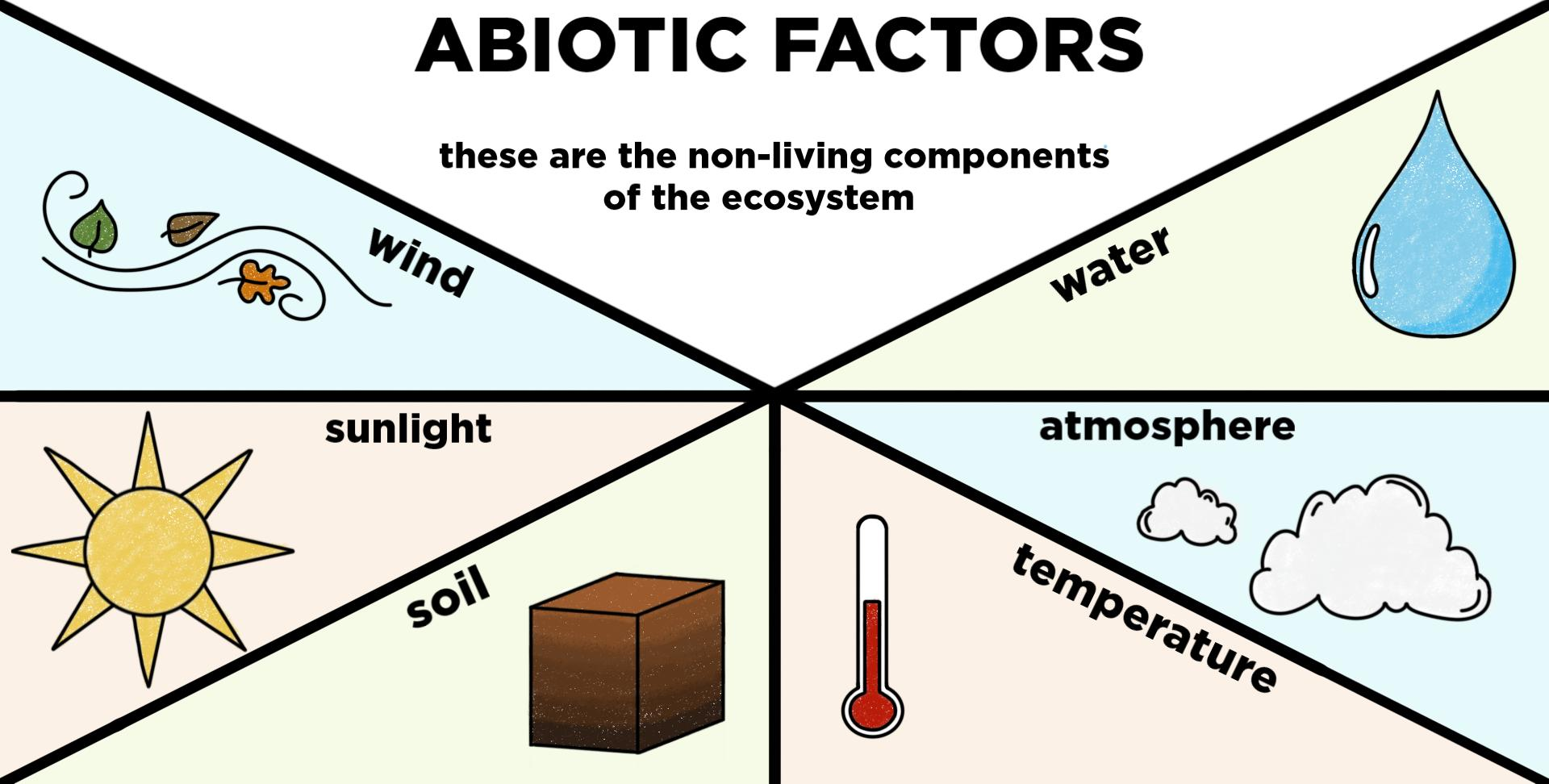 Abiotic Components of Ecosystems  Definition & Examples ...